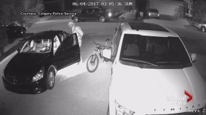 Calgary police release video of car prowler